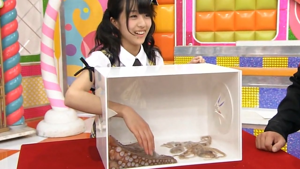 What's In The Box? [awesome Japanese game show] | Things Life